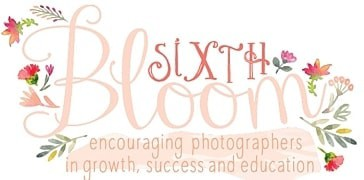 Featured on The Sixth Bloom
