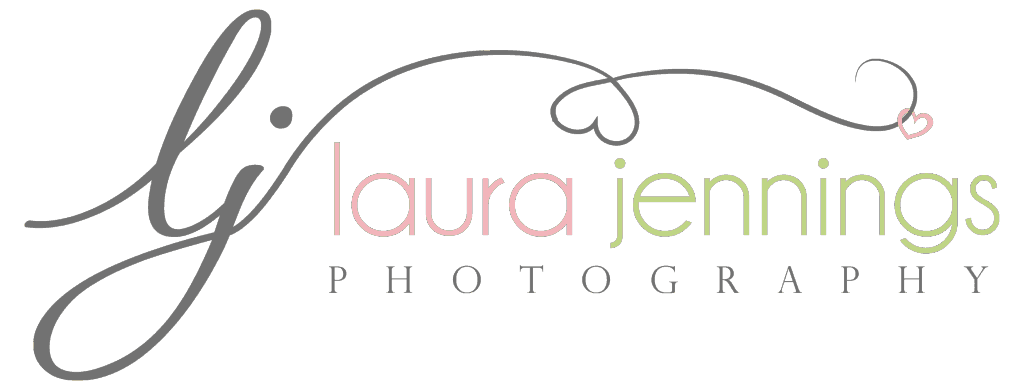 Laura Jennings Photography 2017 Year in Review